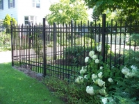 Ornamental Steel Fences
